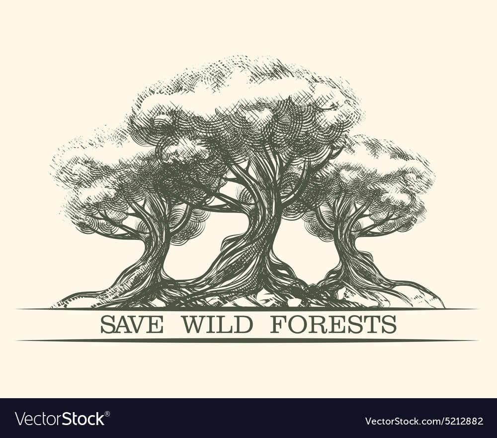 Save wild forests vector