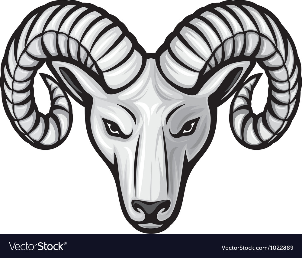 Head of the ram  ram head vector