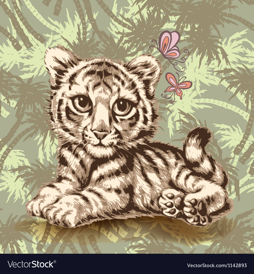 Baby tiger over vector