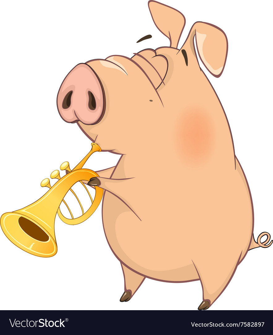 Pigmusician cartoon vector