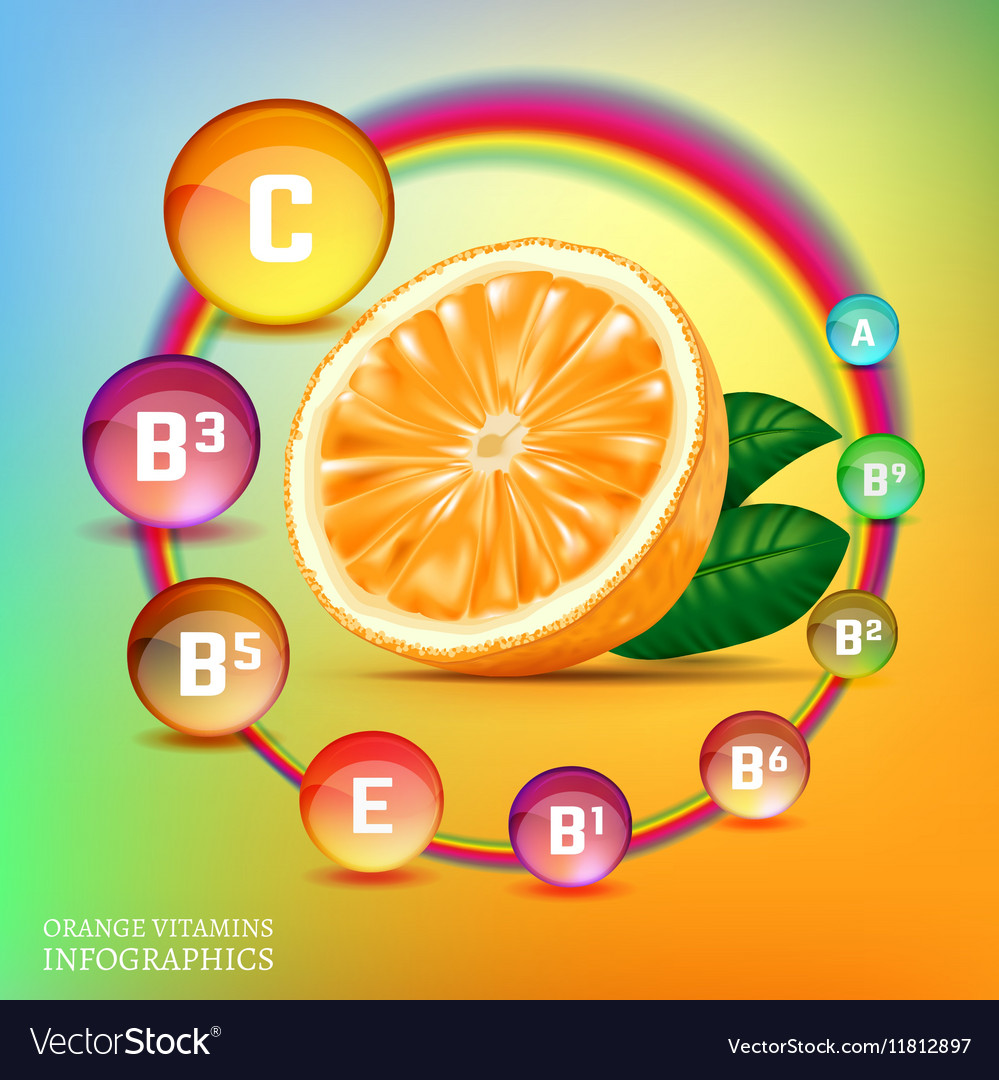 Vitamins in orange vector