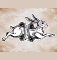 hare or rabbit jumping through the magic wormhole vector image