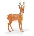 Christmas reindeer polar animal with bell vector image