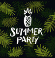 hello summer modern hand drawn lettering phrase vector image