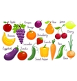 Set of fresh fruit and vegetables vector image