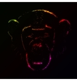 Monkey silhouette of gradient lights vector image