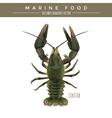 Lobster Marine Food vector image