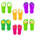 Flip Flops With Color Flowers vector image