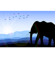 Elephant in the field at dawn vector image