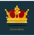 Blinking or shining pope crown tiara vector image