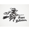 Halloween Old wicked witch flying on broomstick vector image vector image