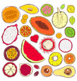 hand drawn colored exotic products set vector image vector image