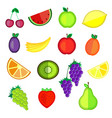 set of colorful cartoon fruit icons vector image