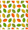 seamless pattern with colored leaves vector image