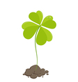 Clover St Patricks Day vector image