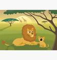 lions in wild vector image