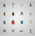 realistic insect locust ladybird and other vector image