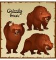 Angry brown bear attacks vector image
