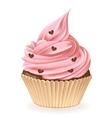 Chocolate Hearts Cupcake vector image