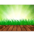Beautiful Spring background vector image
