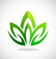 lotus green swirl logo vector image