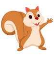 happy squirrel cartoon presenting vector image