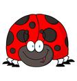 LadyBird Cartoon Character vector image