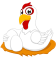 Chicken With Egg vector image