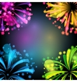 Background with bright colorful fireworks and vector image