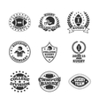 Baseball labels icons set vector image