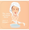 Beauty facial procedure Face vector image