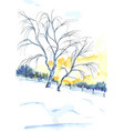 watercolor painted tree near sunset vector image