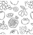 monochrome seamless pattern with fruits vector image vector image
