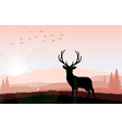 Silhouette a deer the feeding in the bright sunset vector image