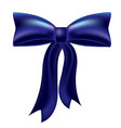 holiday bow ribbon vector image