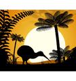 Kiwi bird at sunset vector image