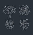 polygonal geometric animals vector image