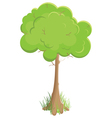 green tree isolated on white background vector image