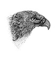 Hand-drawn eagle vector image