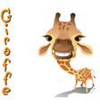 animal giraffe vector image vector image