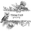 Forest greeting cards with owls spruce and fir vector image