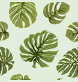 tropical exotic big green monstera leaves pattern vector image vector image