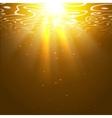 Underwater orange background with sun rays vector image
