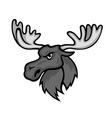 Wild moose vector image