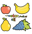 fruit set apple pear grapes bananas on white backg vector image vector image