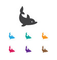 of zoo symbol on dolphin icon vector image