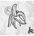 Hand drawn decorative banana vector image