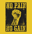 no pain no gain with fist hand vector image