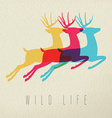 Colorful wild life deer silhouette on paper vector image