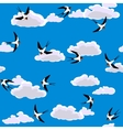 swallow flying vector image